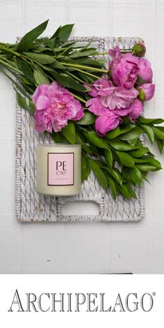 Archipelago, Botanicals, Patrick and Company, Candles, Fragrance, wholesale